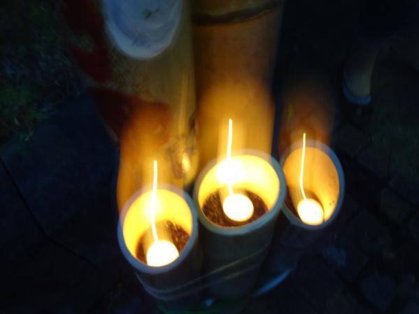 8竹灯籠に火がともり
